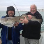 First cod for us this winter. 17 lb beauty. Lots of very good Whiting.