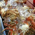 Lots of Crab for a catering!