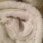 hair in towels, gross!