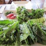 Super fresh salad