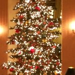 Gorgeous lobby Christmas Tree