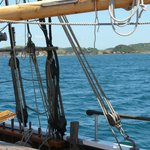 Sailing through the quiet waters of the Bay of Islands