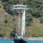 R Tucker Thompson at anchor for lunch in one of the quiet bays of the Bay of Islands