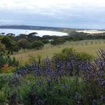 Afternoon view of Emu Bay