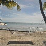 great hammocks, lots of them, rocks blocking ocean though but still beautiful.