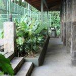 Canopy tour area