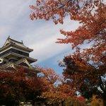 11月中旬の松本城。桜の紅葉も見事です!