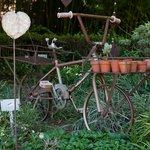 Hands On Retreat Garden