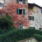 Giardino 2 from garden