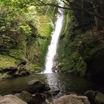 beautiful waterfall, but no seals