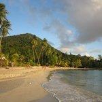 Plage de l'Anse Figuier