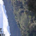 Banna View Tour Operator Foto