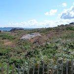 paysage côte de granite rose