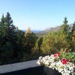 Utsikt från verandan på Buustamon