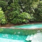 Pool overlooking Ayung