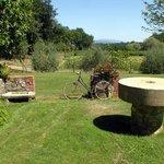 Agriturismo Il Sole Verde Photo