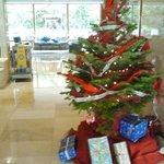Arbol de navidad13 , colocado en la entrada del hotel