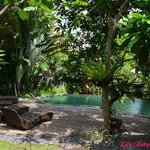 la piscine dédiée aux bungalows