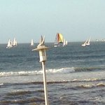 Sunset regatta - from apartment