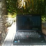 Working under a palm tree with great wifi!