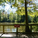 """Fishing Pond (""""Beware of Alligators"""") - but we didn't see any"""