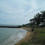 Kapaa Beach