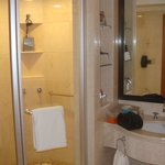 Shower and bath vanity, tub is off frame to right and toilet is off frame to the left