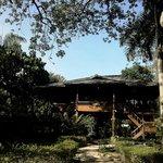 Bangau cottage at the morning