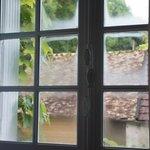 room's window