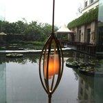 lobby pond