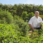 Chef Stephane Beaucamp in our on-site Garden