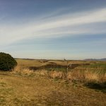 Foto di El Patio Ranch