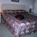 Roark Vacation Resort - BR