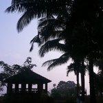 Kittu's Farm & Resort
