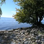 Rugged shoreline