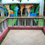 balcone vista carpe giapponesi