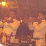 Awesome mariachi band one night
