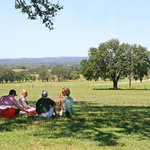 Enjoy the fabulous views of the Hill Country