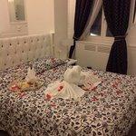 camera giglio bianco