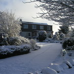 Snowy garden and view of guest dining room