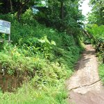 the steep road up to the guest house