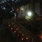 Tree House dinner for 2