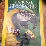 National Geographic from 1994!