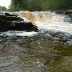 Stainforth Force/River Ribble: May 2012