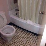 Banheiro nojento!
