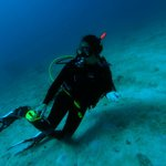 Black Beard Sports Dive Tour