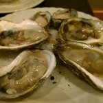 Fresh Oyster from Raw Bar Buffet