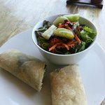 Chicken Wrap and Salad