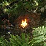 Natural Flames