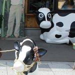 入口の牛の置物と松山千春の写真
